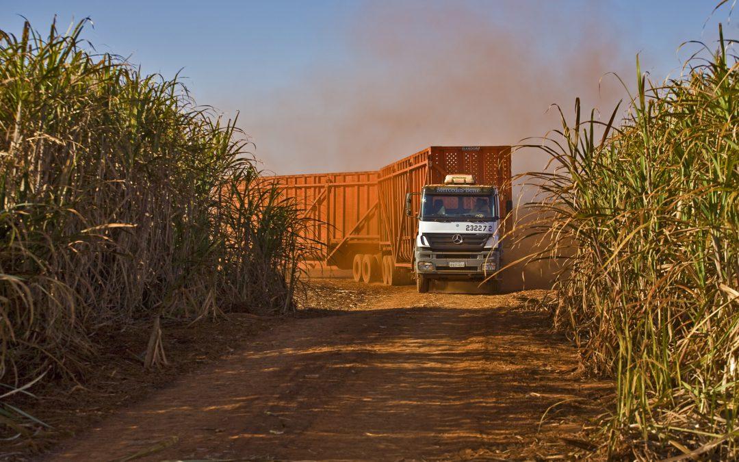 Safra: etanol em alta e queda expressiva na produção de açúcar