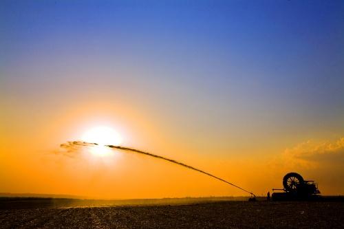 Vinhaça: biofertilizante e energia sustentável
