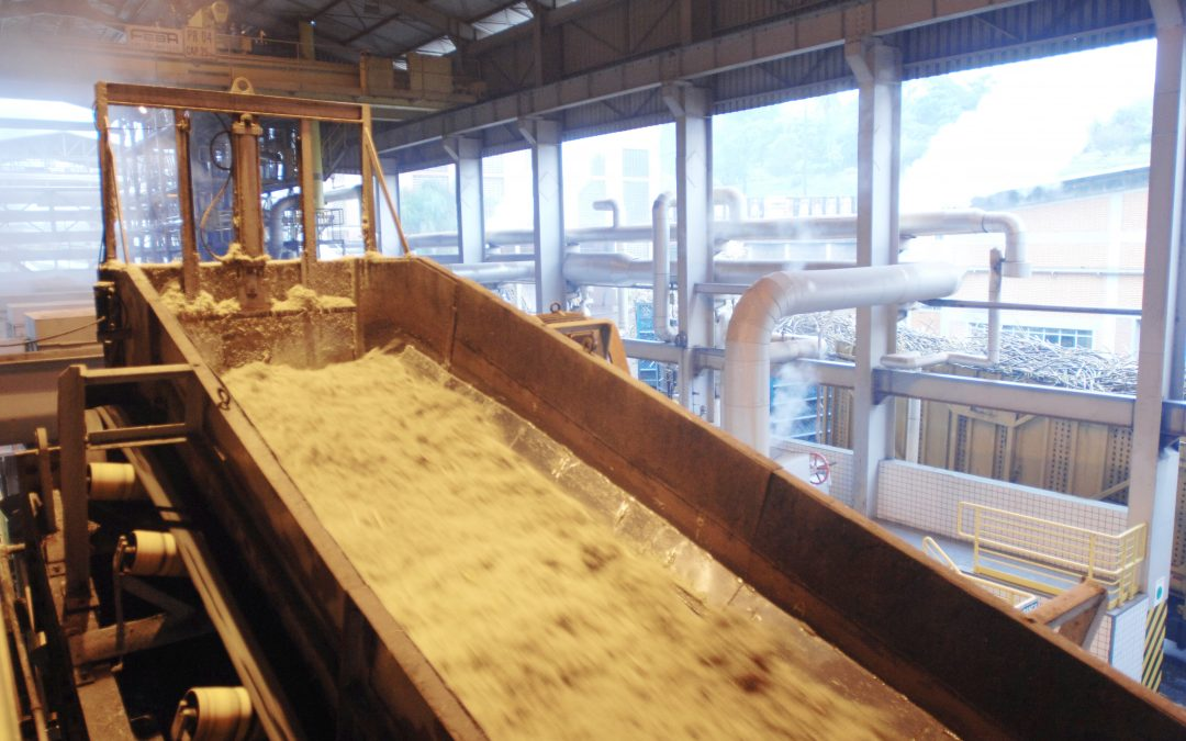Moagem de cana-de-açúcar atinge quase 3 milhões de toneladas