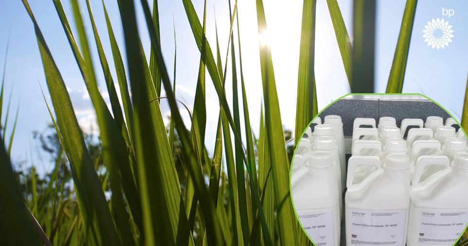BP Bunge Bioenergia doa álcool 70 para o SUS