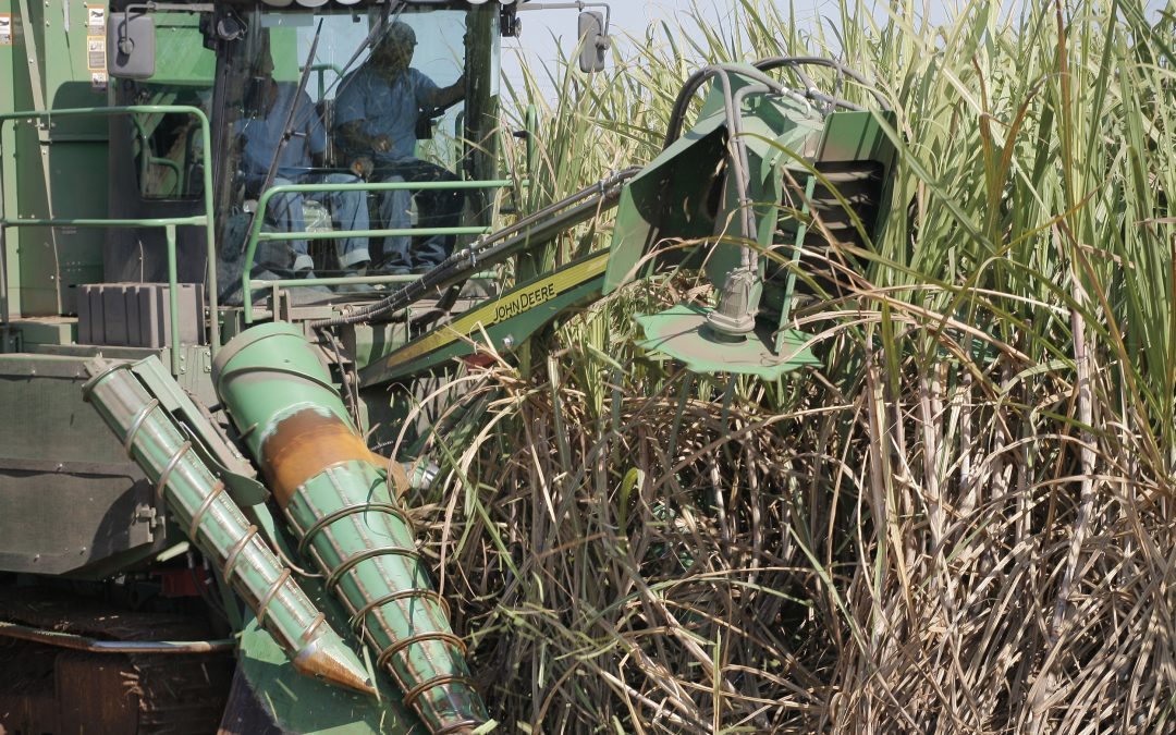 Queda no faturamento com etanol atinge quase 50% na primeira quinzena de abril