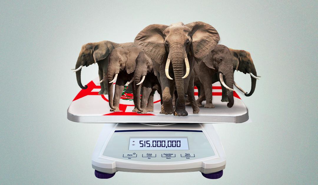 Opinião – Cem milhões de elefantes