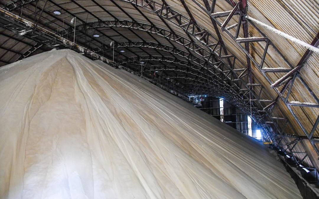 Safra: Produção de açúcar ocupa 47,6% do mix