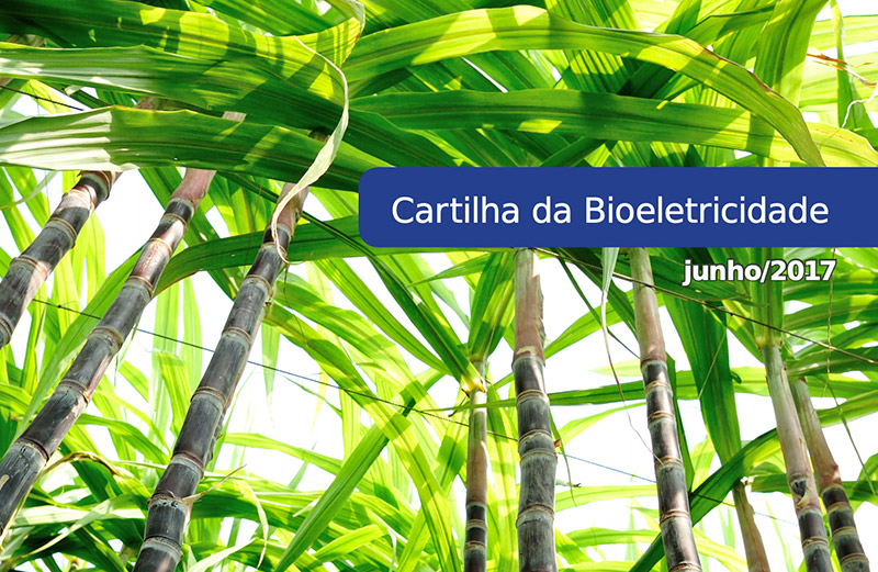 Cartilha Da Bioeletricidade II – 2017