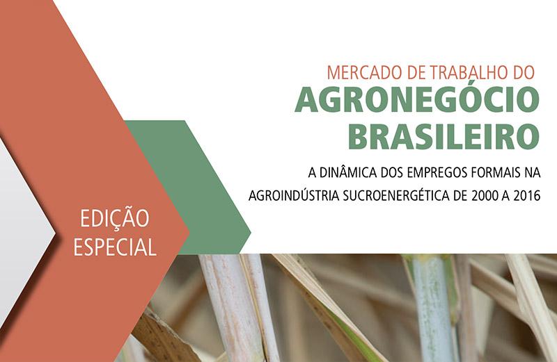 Mercado de Trabalho do Agronegócio Brasileiro (2000 a 2016)