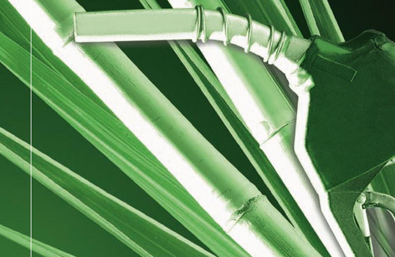 Produção e Uso do Etanol Combustível no Brasil (espanhol)