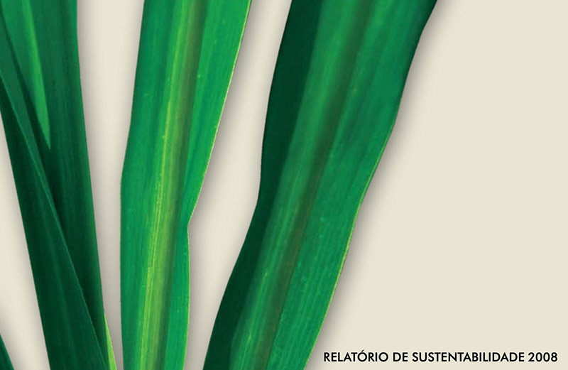 Síntese do 1º Relatório de Sustentabilidade do Setor Sucroenergético