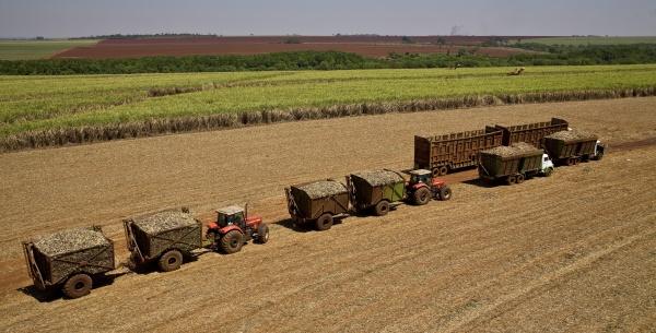 2020 fecha com 597 milhões de toneladas de cana processada