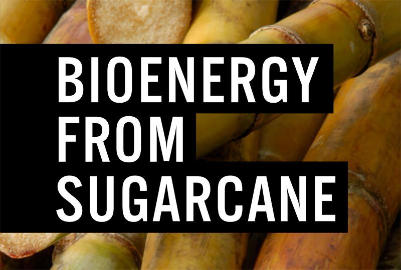 Pesquisadores lançam livro sobre a bioenergia da cana-de-açúcar