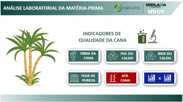 Observatório da Cana publica painel sobre qualidade de cana