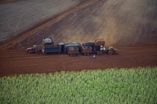 Moagem de cana na safra chega aos 600 milhões de toneladas